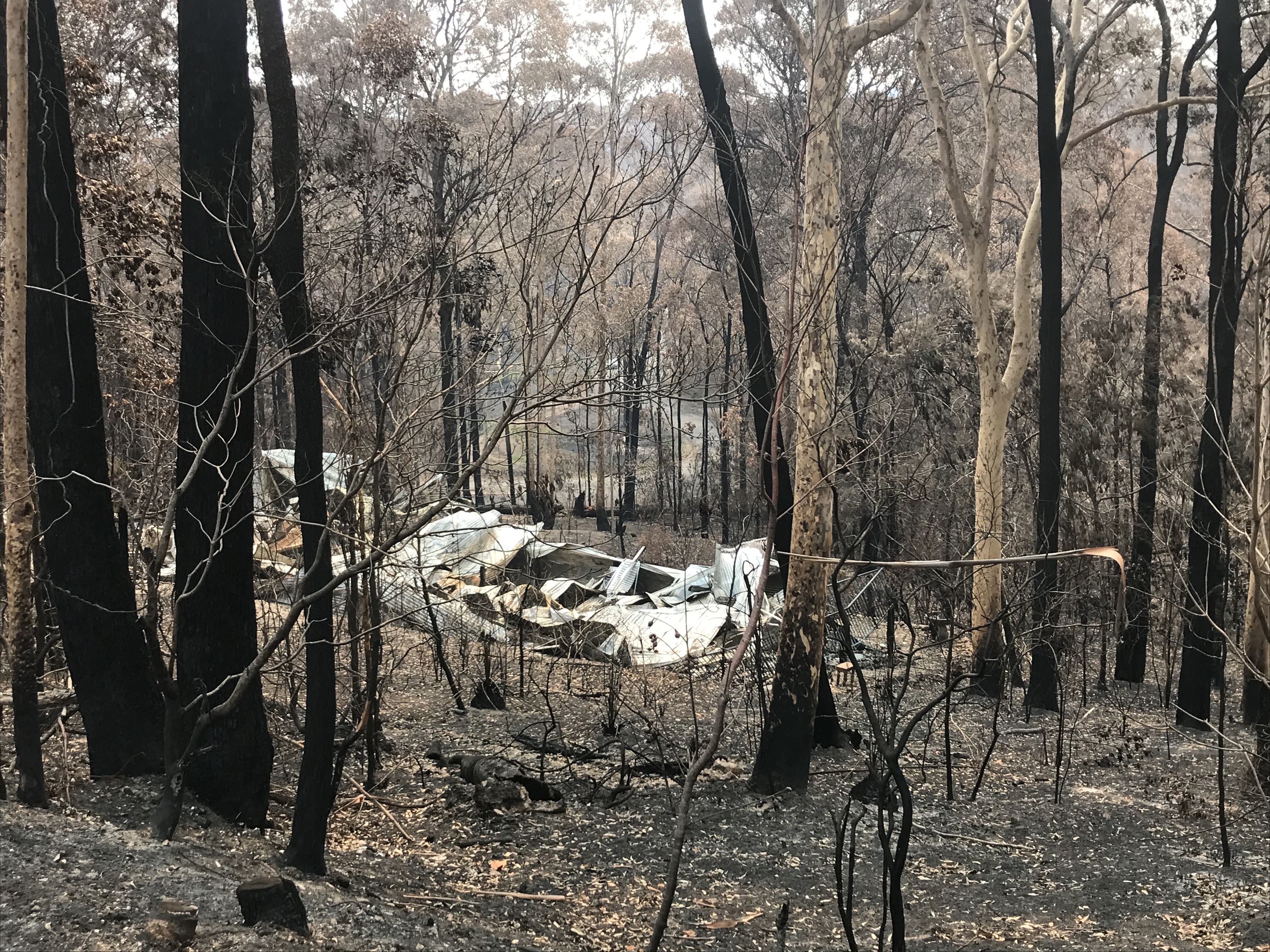 Photo showing aftermath of 2019 New Years Eve bushfires
